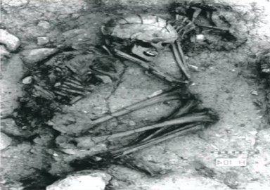 Dog skeleton in human tomb, Israel 10,000 BC