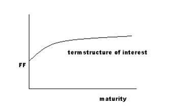 Term structure of interest